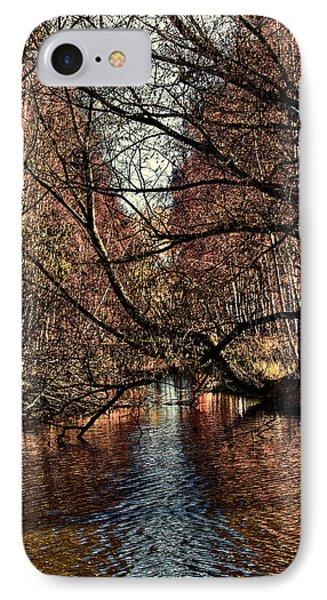 Autumn Light By Leif Sohlman IPhone Case