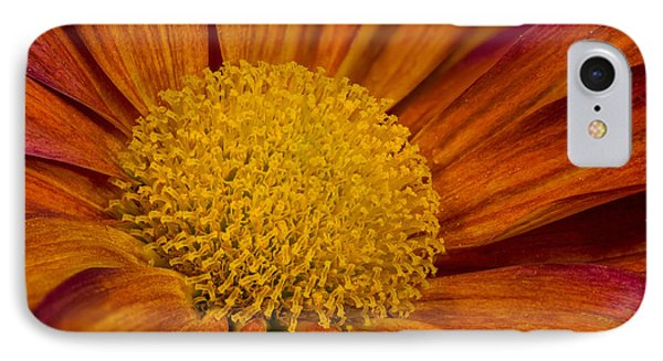 Autumn Mum IPhone Case