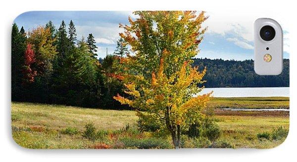 Autumn Shores Of Maine IPhone Case