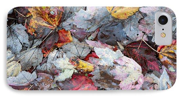 Autumn's Leaves IPhone Case
