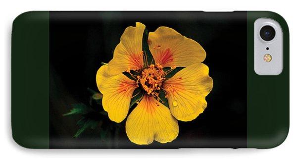 Avens Flower IPhone Case