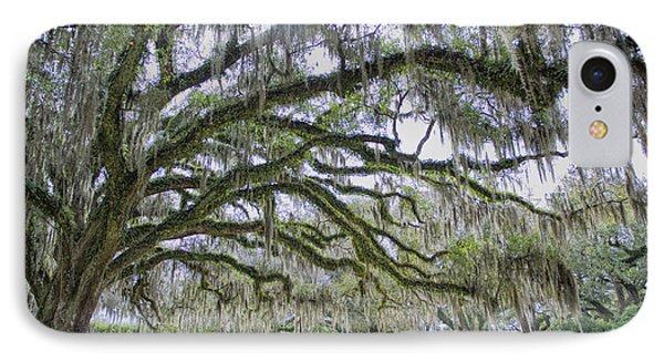 Avery Island Oak IPhone Case
