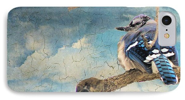Baby Blue Jay In Winter IPhone Case