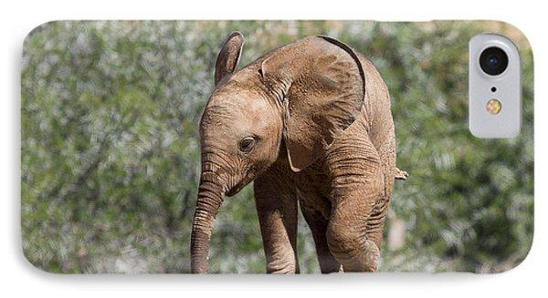 Baby Series Elephant IPhone Case