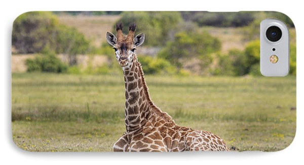 Baby Series Giraffe IPhone Case