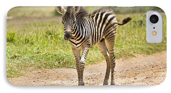 Baby Series Zebra IPhone Case