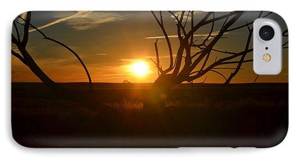 Back Forty Sunrise IPhone Case