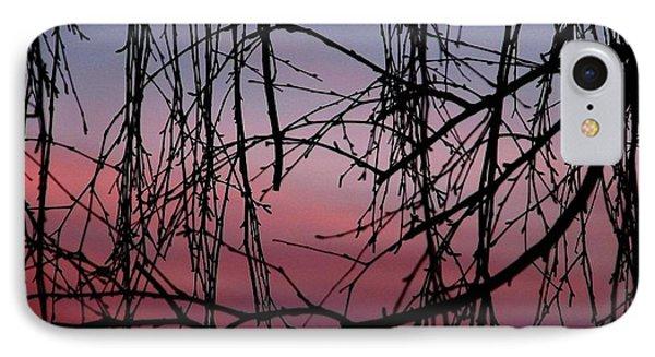 Backyard Sunset IPhone Case