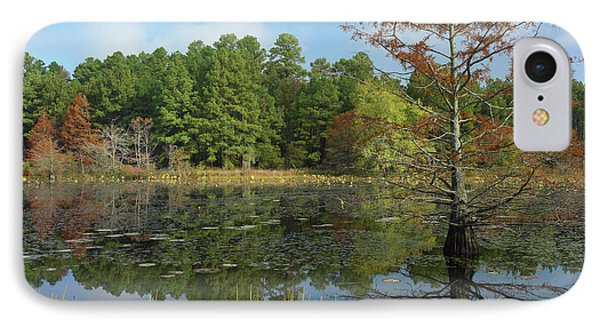 Bald Cypress Tree In Millwood Lake IPhone Case