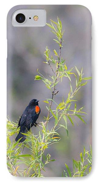 Bamboo And Bird IPhone Case