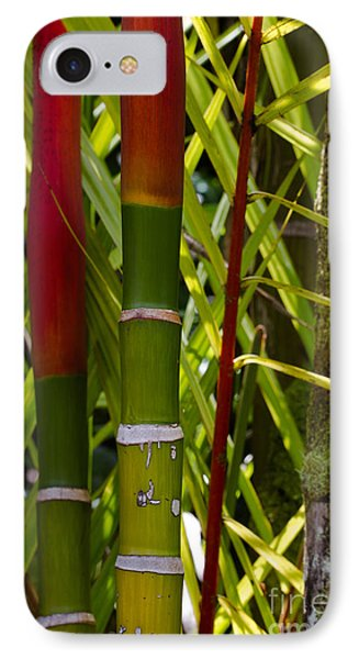 Bamboo Too All Profits Go To Hospice Of The Calumet Area IPhone Case