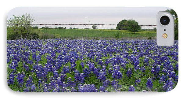 Barbed Wire Bluebonnets IPhone Case