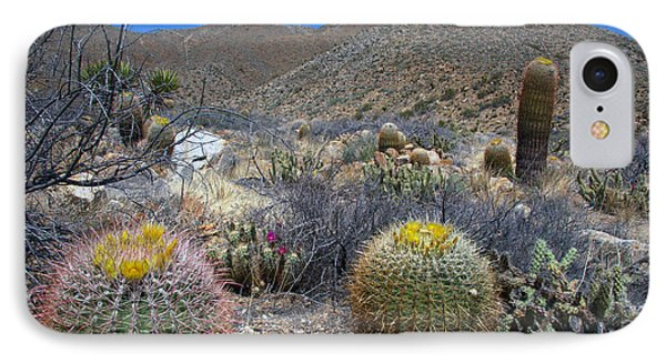Barrel Cacti In Bloom IPhone Case