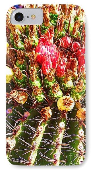Barrel Cactus Blooms IPhone Case