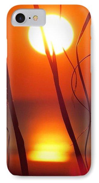 Beach Grass Sunrise IPhone Case