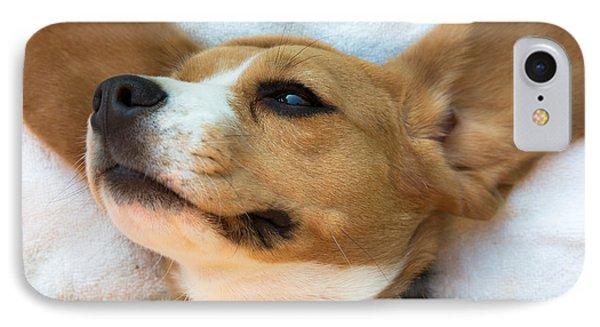 Beagles Dreams IPhone Case