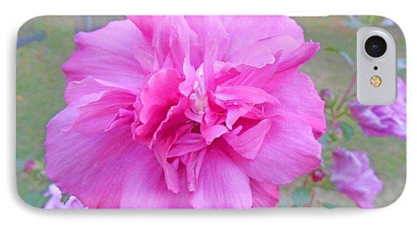 Beautiful Blooming Fuschia Rose IPhone Case