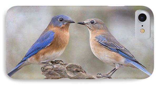 Beautiful Bluebirds IPhone Case