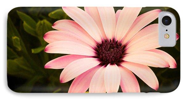 Beautiful Flower  IPhone Case
