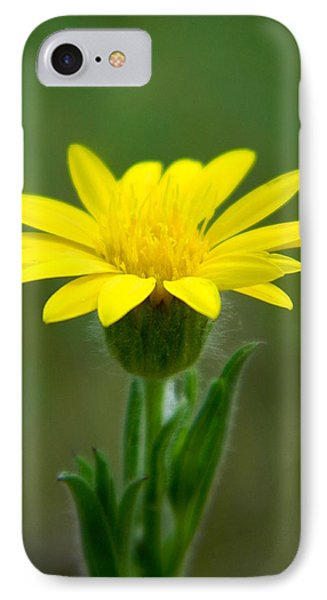 Beauty In Yellow IPhone Case