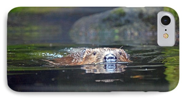 Beaver Swimming IPhone Case