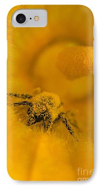 Bee In Pollen IPhone Case