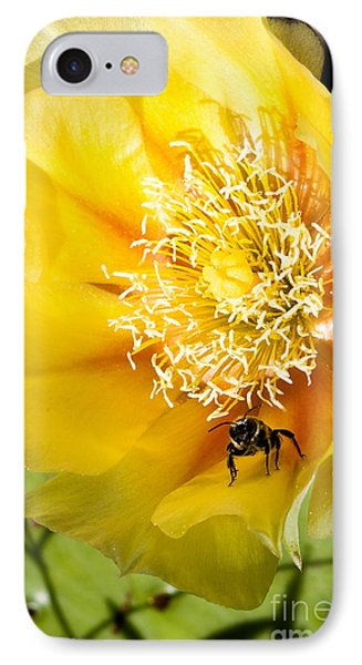 Bee Stands Guard IPhone Case