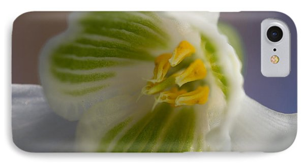 Bee's View Of A Snowdrop IPhone Case
