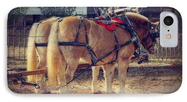 Belgium Draft Horses IPhone Case