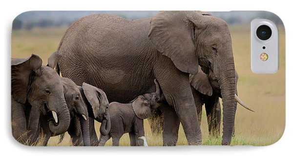 Africa iPhone 8 Case - Big Family by Young Feng
