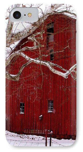 Big Red Bird House IPhone Case