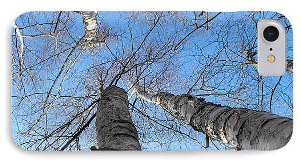 Birch Group In Winter IPhone Case
