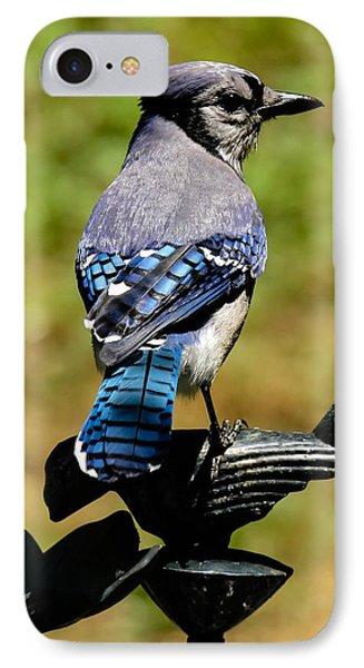 Bird On A Bird IPhone Case