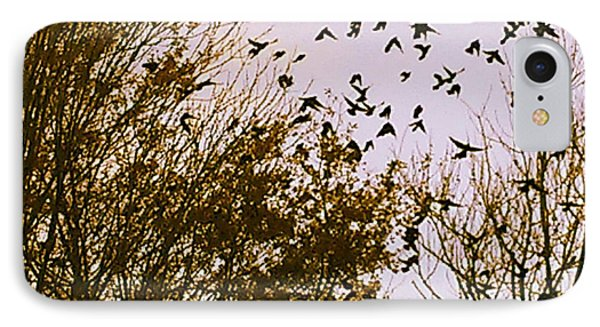 Birds Of A Feather Flock Together IPhone Case