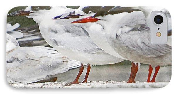 Birds On A Ledge IPhone Case