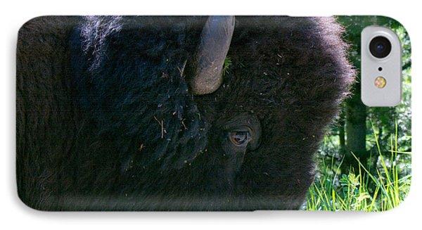 Bison Close Up IPhone Case