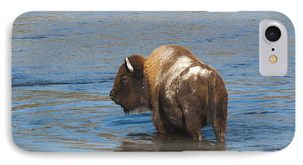 Bison Crossing River IPhone Case
