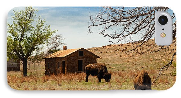 Bisons In The Springtime IPhone Case