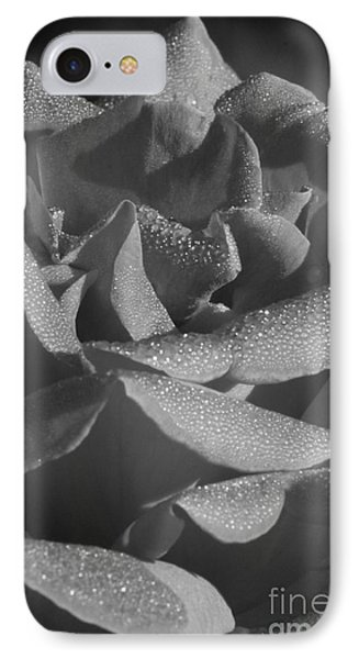 Black And White Morning Rose IPhone Case