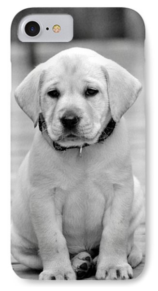Black And White Puppy IPhone Case