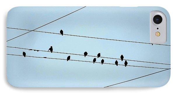 Black Birds Waiting In Blue IPhone Case