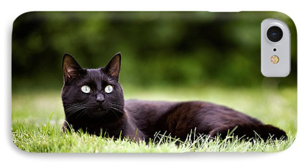 Black Cat Lying In Garden IPhone Case