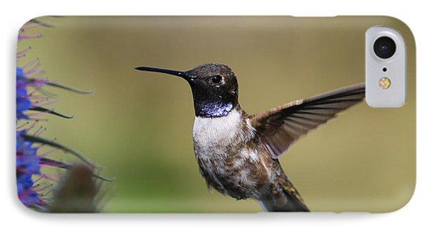 Black-chin Humming Bird IPhone Case