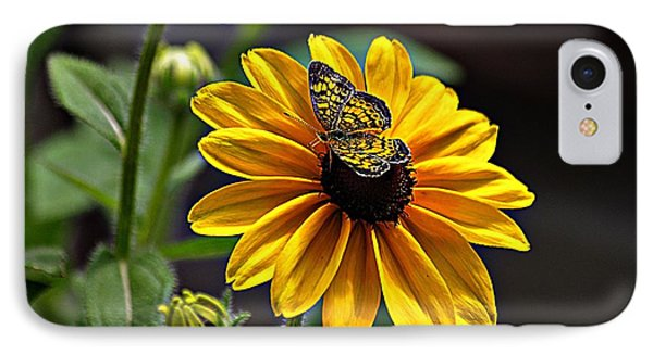 Black-eye Susan With Butterfly IPhone Case