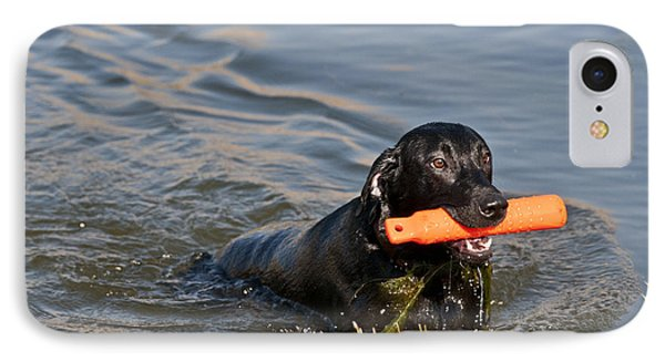 Black Labrador Retriever, Retrieving IPhone Case