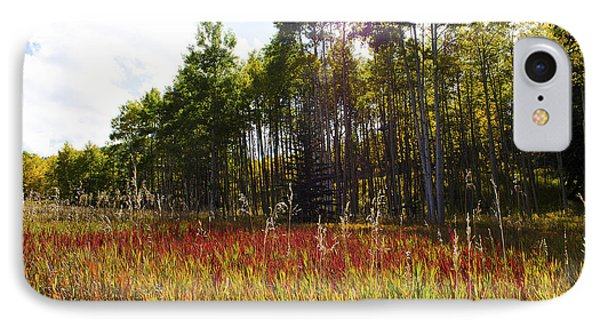 Blazing Red Grass In Colorado IPhone Case