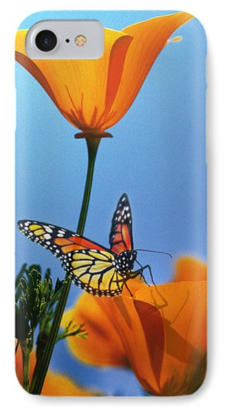 Blessed By The Sun IPhone Case