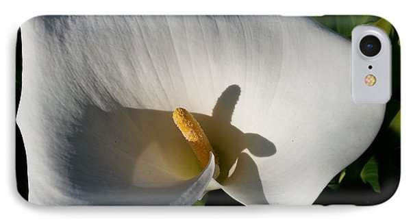 Blooming Lily Of San Francisco IPhone Case