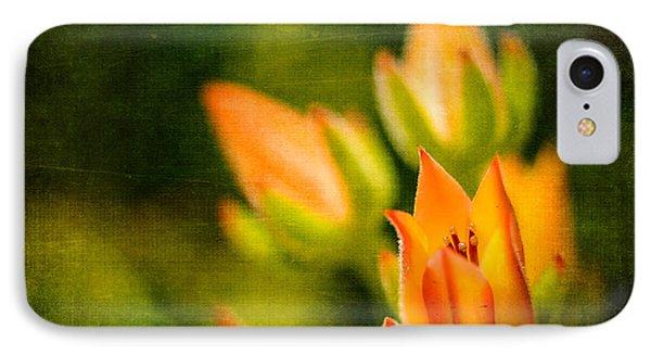 Blooming Succulents IIi IPhone Case