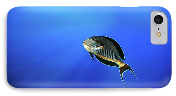 Egyptian iPhone 8 Case - Blu by Alessandro Catta